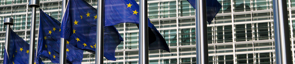 Competition and EU Law